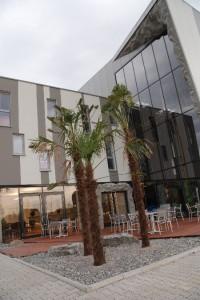 Bildquelle: http://www.kletterhalle-bensheim.de